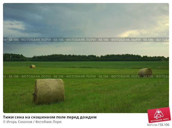 Тюки сена на скошенном поле перед дождем, фото № 58106, снято 28 мая 2017 г. (c) Игорь Соколов / Фотобанк Лори