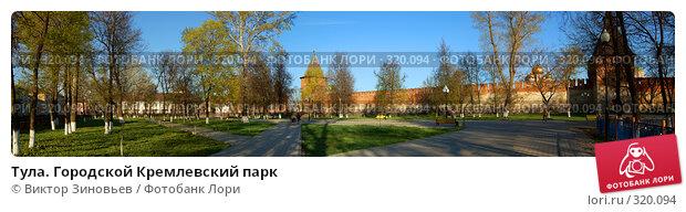 Тула. Городской Кремлевский парк, эксклюзивное фото № 320094, снято 18 января 2017 г. (c) Виктор Зиновьев / Фотобанк Лори