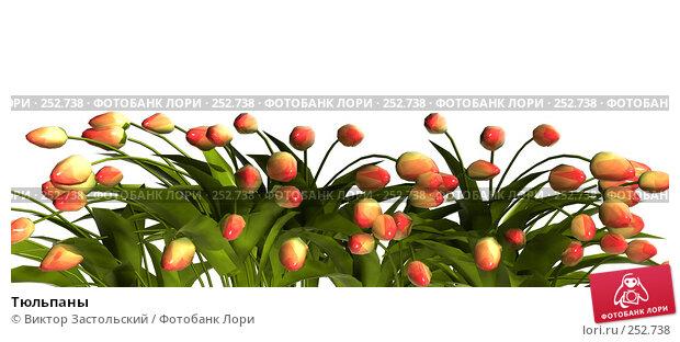 Тюльпаны, иллюстрация № 252738 (c) Виктор Застольский / Фотобанк Лори