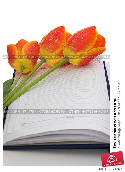 Тюльпаны и ежедневник, фото № 171478, снято 25 апреля 2007 г. (c) Александр Катайцев / Фотобанк Лори