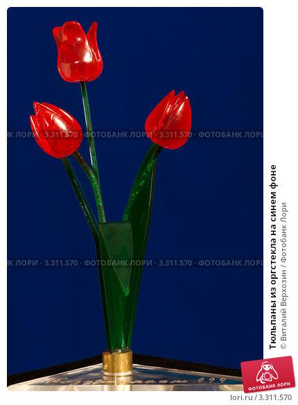 Тюльпаны из оргстекла на синем фоне. Стоковое фото, фотограф Виталий Верхозин / Фотобанк Лори