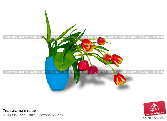 Тюльпаны в вазе, фото № 222690, снято 10 марта 2008 г. (c) Ирина Солошенко / Фотобанк Лори