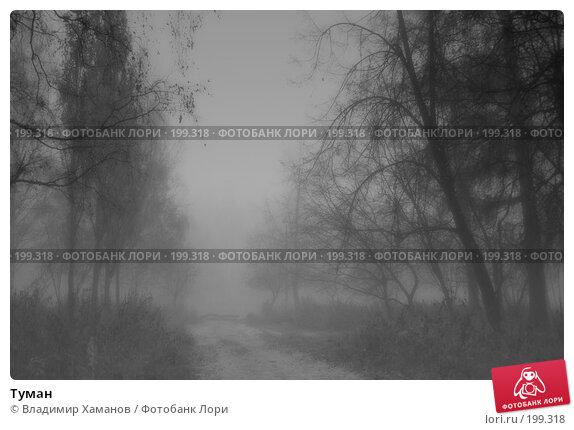 Туман, фото № 199318, снято 16 октября 2005 г. (c) Владимир Хаманов / Фотобанк Лори