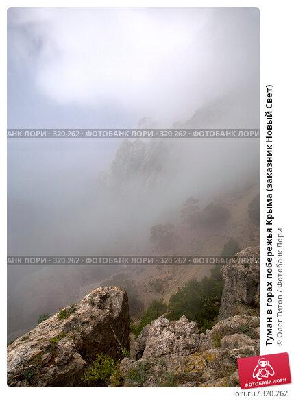 Туман в горах побережья Крыма (заказник Новый Свет), фото № 320262, снято 21 мая 2008 г. (c) Олег Титов / Фотобанк Лори