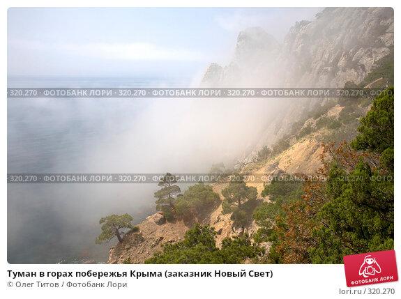 Туман в горах побережья Крыма (заказник Новый Свет), фото № 320270, снято 21 мая 2008 г. (c) Олег Титов / Фотобанк Лори
