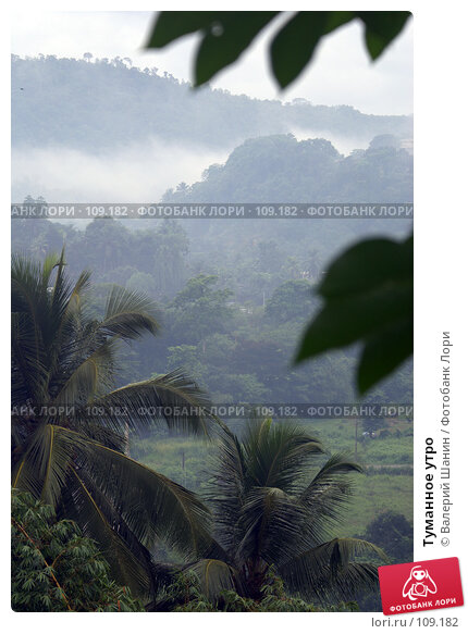 Туманное утро, фото № 109182, снято 15 июня 2007 г. (c) Валерий Шанин / Фотобанк Лори