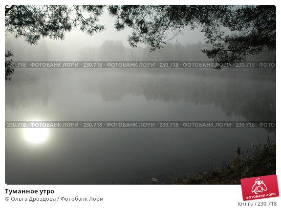 Туманное утро, фото № 230718, снято 8 мая 2006 г. (c) Ольга Дроздова / Фотобанк Лори