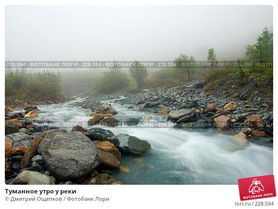 Туманное утро у реки, фото № 228594, снято 17 августа 2007 г. (c) Дмитрий Ощепков / Фотобанк Лори