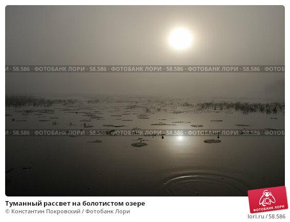 Туманный рассвет на болотистом озере, фото № 58586, снято 9 июня 2007 г. (c) Константин Покровский / Фотобанк Лори