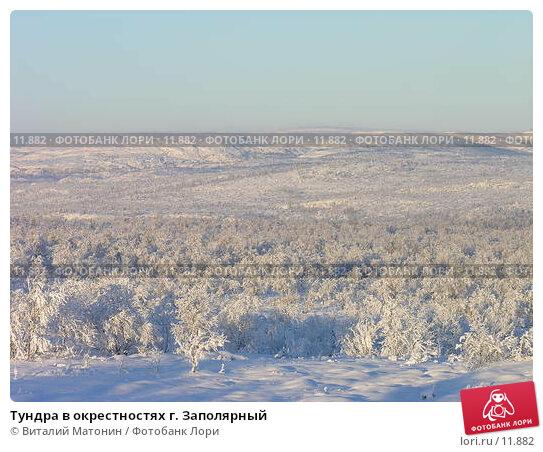 Тундра в окрестностях г. Заполярный, фото № 11882, снято 2 ноября 2006 г. (c) Виталий Матонин / Фотобанк Лори