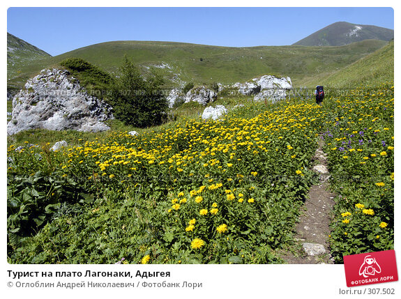 Турист на плато Лагонаки, Адыгея, фото № 307502, снято 27 октября 2016 г. (c) Оглоблин Андрей Николаевич / Фотобанк Лори