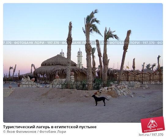 Купить «Туристический лагерь в египетской пустыне», фото № 197370, снято 13 января 2008 г. (c) Яков Филимонов / Фотобанк Лори