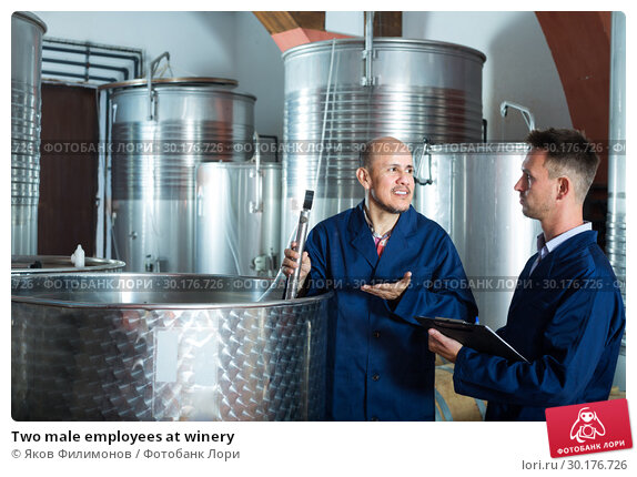 Купить «Two male employees at winery», фото № 30176726, снято 12 июня 2019 г. (c) Яков Филимонов / Фотобанк Лори