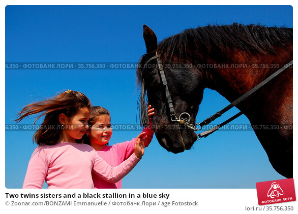 Two twins sisters and a black stallion in a blue sky. Стоковое фото, фотограф Zoonar.com/BONZAMI Emmanuelle / age Fotostock / Фотобанк Лори