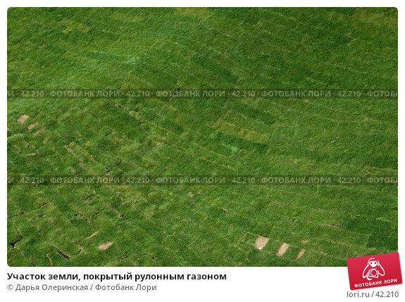 Участок земли, покрытый рулонным газоном, фото № 42210, снято 11 сентября 2005 г. (c) Дарья Олеринская / Фотобанк Лори