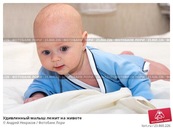 Купить «Удивленный малыш лежит на животе», фото № 23860226, снято 24 февраля 2015 г. (c) Андрей Некрасов / Фотобанк Лори