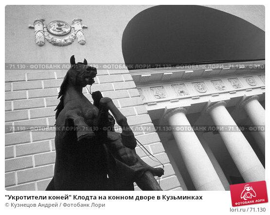 """""""Укротители коней"""" Клодта на конном дворе в Кузьминках, фото № 71130, снято 24 февраля 2017 г. (c) Кузнецов Андрей / Фотобанк Лори"""