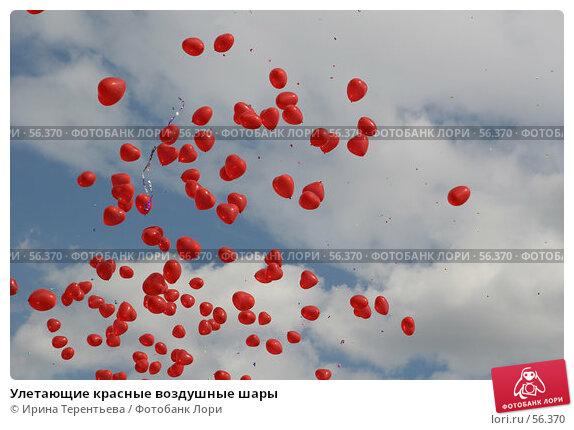 Купить «Улетающие красные воздушные шары», эксклюзивное фото № 56370, снято 8 июня 2007 г. (c) Ирина Терентьева / Фотобанк Лори