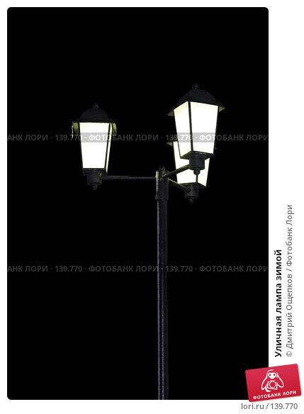 Купить «Уличная лампа зимой», фото № 139770, снято 14 декабря 2006 г. (c) Дмитрий Ощепков / Фотобанк Лори