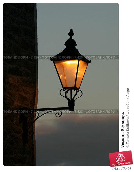 Купить «Уличный фонарь », фото № 7426, снято 7 августа 2006 г. (c) Tamara Kulikova / Фотобанк Лори