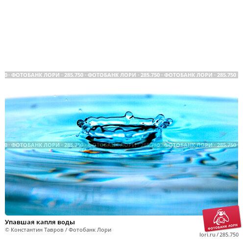 Упавшая капля воды, фото № 285750, снято 5 апреля 2008 г. (c) Константин Тавров / Фотобанк Лори