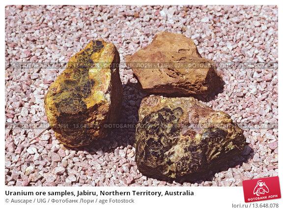 Купить «Uranium ore samples, Jabiru, Northern Territory, Australia», фото № 13648078, снято 2 декабря 2019 г. (c) age Fotostock / Фотобанк Лори