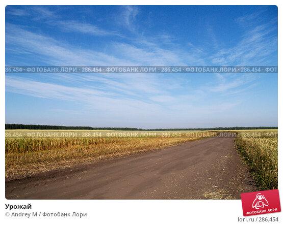 Урожай, фото № 286454, снято 5 августа 2006 г. (c) Andrey M / Фотобанк Лори