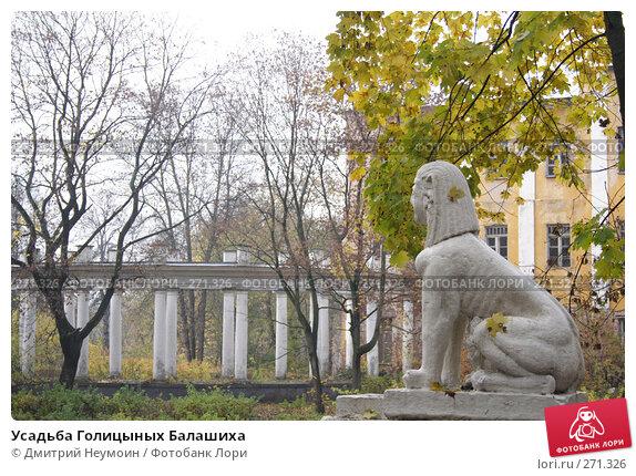 Усадьба Голицыных Балашиха, эксклюзивное фото № 271326, снято 21 октября 2007 г. (c) Дмитрий Неумоин / Фотобанк Лори