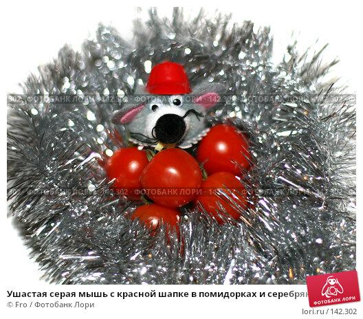 Ушастая серая мышь с красной шапке в помидорках и серебряной мишуре, фото № 142302, снято 25 июня 2017 г. (c) Fro / Фотобанк Лори