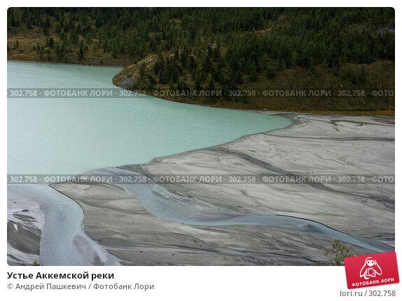 Устье Аккемской реки, фото № 302758, снято 22 февраля 2017 г. (c) Андрей Пашкевич / Фотобанк Лори