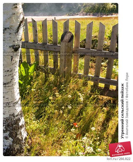 Купить «Утренний сельский пейзаж», фото № 266822, снято 1 августа 2006 г. (c) Анатолий Заводсков / Фотобанк Лори
