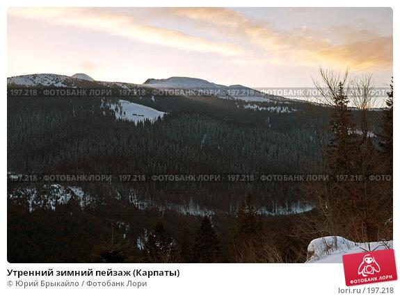 Утренний зимний пейзаж (Карпаты), фото № 197218, снято 3 января 2008 г. (c) Юрий Брыкайло / Фотобанк Лори