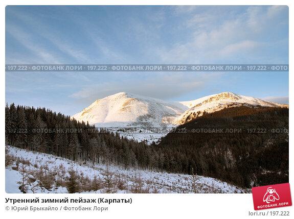 Утренний зимний пейзаж (Карпаты), фото № 197222, снято 3 января 2008 г. (c) Юрий Брыкайло / Фотобанк Лори