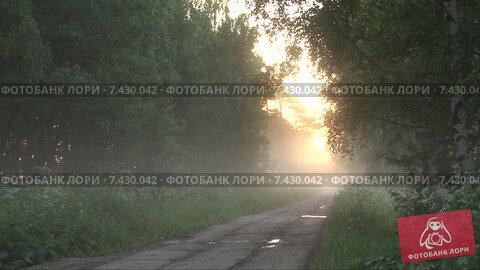 Утро и туман на сельской дороге. Timelapse. Скорость х96. Стоковое видео, видеограф Mike The / Фотобанк Лори