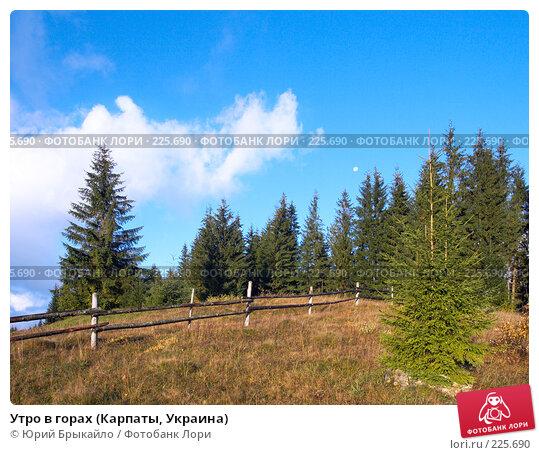Утро в горах (Карпаты, Украина), фото № 225690, снято 29 сентября 2007 г. (c) Юрий Брыкайло / Фотобанк Лори