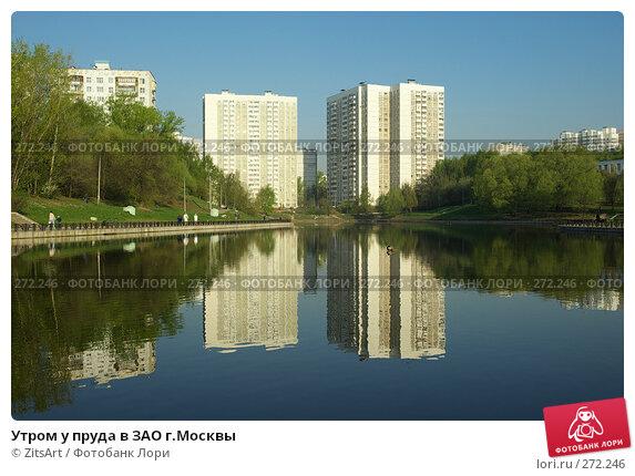 Утром у пруда в ЗАО г.Москвы, фото № 272246, снято 29 апреля 2008 г. (c) ZitsArt / Фотобанк Лори