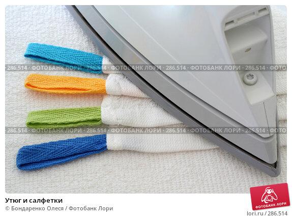 Купить «Утюг и салфетки», фото № 286514, снято 8 мая 2008 г. (c) Бондаренко Олеся / Фотобанк Лори