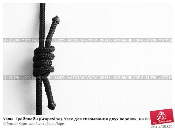 Купить «Узлы. Грейпвайн (Grapevine). Узел для связывания двух веревок, на белом фоне», фото № 35870, снято 22 апреля 2007 г. (c) Роман Коротаев / Фотобанк Лори