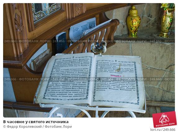 Купить «В часовне у святого источника», фото № 249666, снято 12 апреля 2008 г. (c) Федор Королевский / Фотобанк Лори