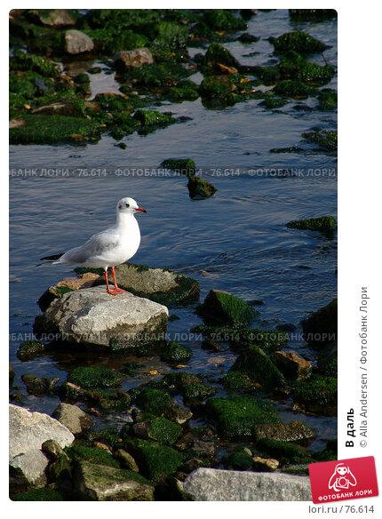 В даль, фото № 76614, снято 19 октября 2006 г. (c) Alla Andersen / Фотобанк Лори