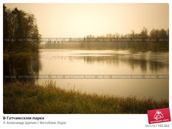 В Гатчинском парке, эксклюзивное фото № 160362, снято 28 октября 2007 г. (c) Александр Щепин / Фотобанк Лори