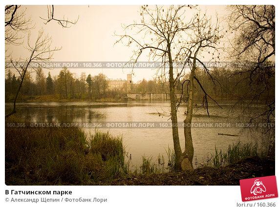 В Гатчинском парке, эксклюзивное фото № 160366, снято 28 октября 2007 г. (c) Александр Щепин / Фотобанк Лори