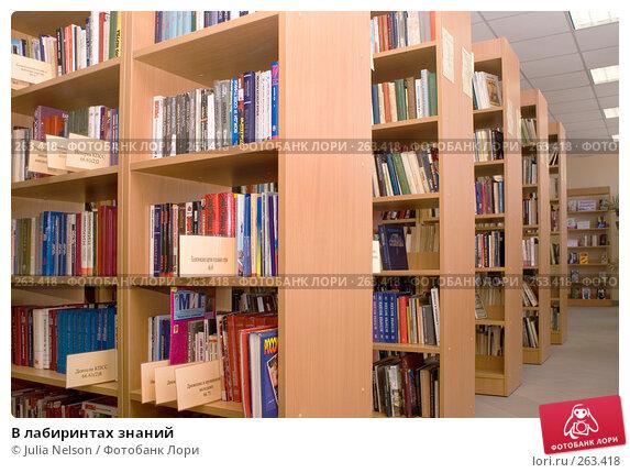 В лабиринтах знаний, фото № 263418, снято 23 апреля 2008 г. (c) Julia Nelson / Фотобанк Лори