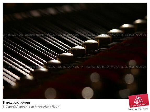 В недрах рояля, фото № 36922, снято 24 марта 2017 г. (c) Сергей Лаврентьев / Фотобанк Лори