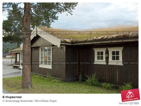 В Норвегии, эксклюзивное фото № 227850, снято 2 августа 2006 г. (c) Александр Алексеев / Фотобанк Лори