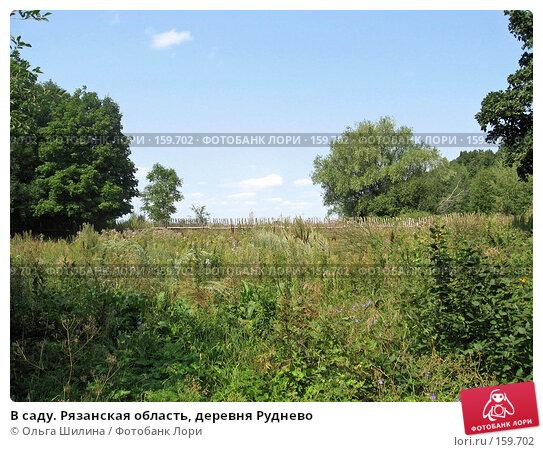 В саду. Рязанская область, деревня Руднево, фото № 159702, снято 8 августа 2007 г. (c) Ольга Шилина / Фотобанк Лори