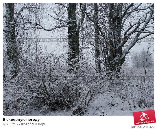 В скверную погоду, фото № 234322, снято 13 января 2007 г. (c) VPutnik / Фотобанк Лори