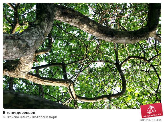 В тени деревьев, фото № 11334, снято 4 июня 2006 г. (c) Ткачёва Ольга / Фотобанк Лори