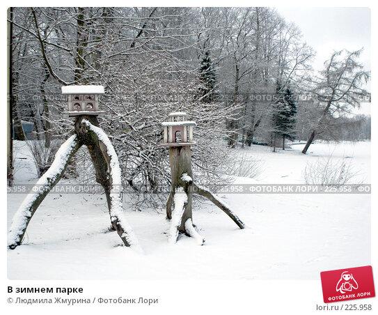 В зимнем парке, фото № 225958, снято 16 февраля 2008 г. (c) Людмила Жмурина / Фотобанк Лори