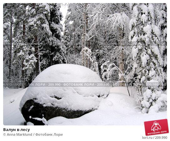 Валун в лесу, фото № 209990, снято 21 января 2008 г. (c) Anna Marklund / Фотобанк Лори